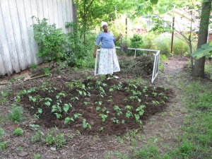 nanyuria with her squash plants